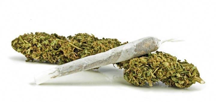 Các phương pháp sử dụng THC - sử dụng Cần sa - Tạp chí Cần sa Việt Nam - cansa.co