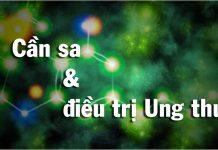 Mọi thứ bạn cần biết về Cần sa và Điều trị ung thư - Tạp chí Cần sa Việt Nam - cansa.co